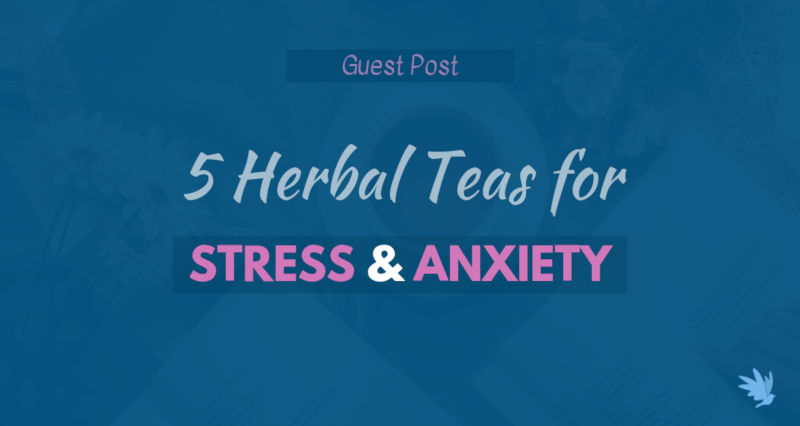 5 Herbal Teas for Anxiety and Stress Features Image